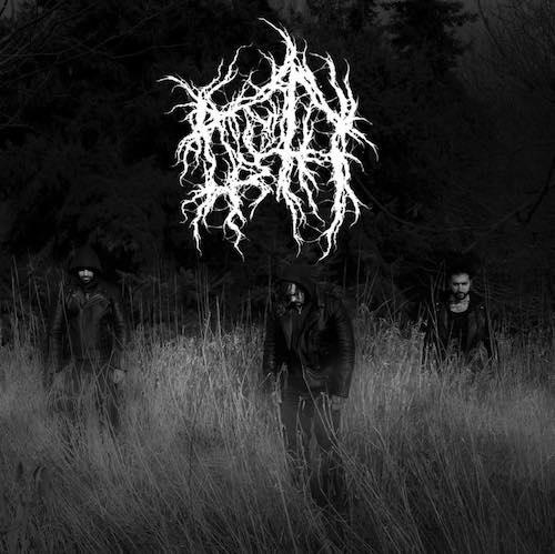 noroth band shot